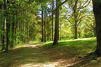 Spaziergänge durch den Schlosspark